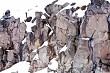 Snow and rocks #9