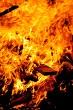 Guy fawkes bonfire #21