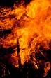 Guy fawkes bonfire #13