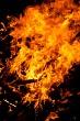Guy fawkes bonfire #3