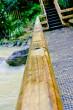 Lower platform rain