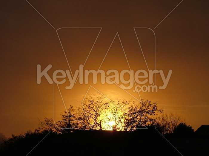 sunrise in hamilton Photo #1512