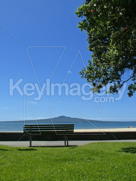 The bench at the beach Photo #4966