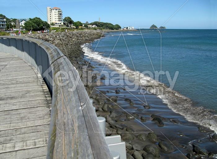 The shore line Photo #7471