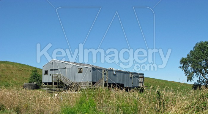 The woolshed in the long grass 1 Photo #7474