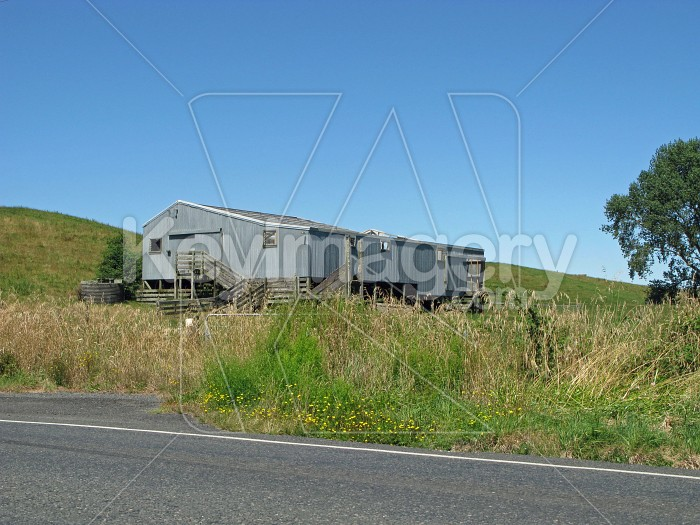 The woolshed in the long grass 2 Photo #7473