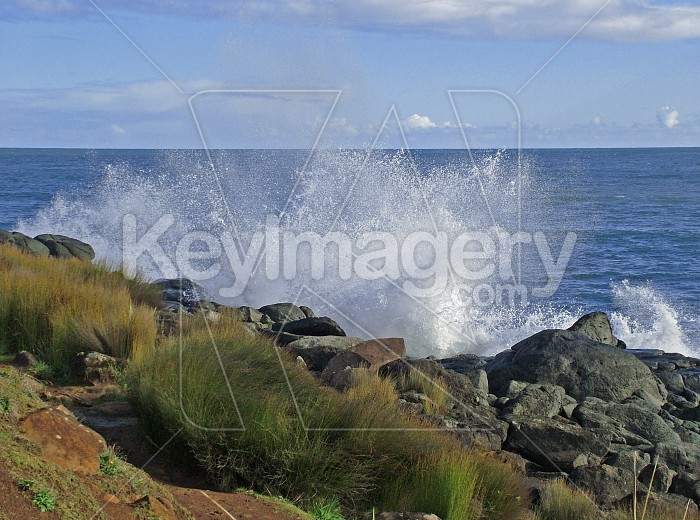 wave spray Photo #2291