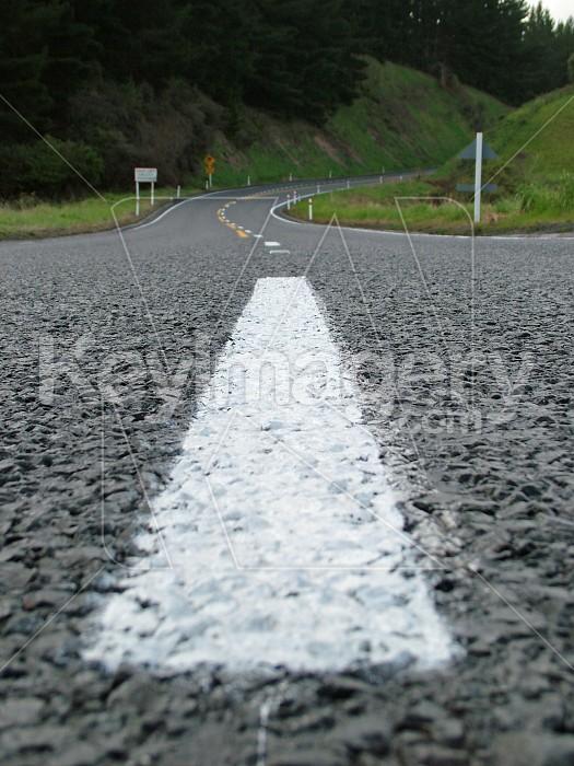 White road line Photo #4754