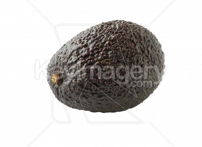 Avocado isolated on white background. Photo #61575