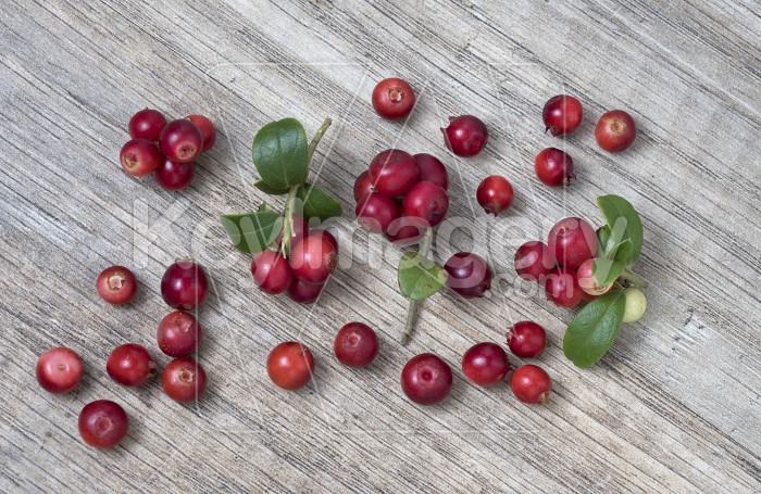 Red ripe lingonberry with leaves, on wooden background, top view Photo #62267