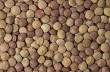 Dry organic brown lentils as background, top view.