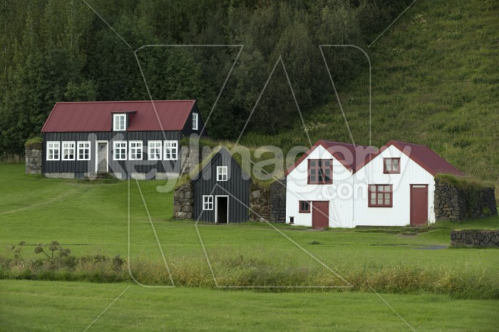 Traditional iclandic houses with grassy roofs. Photo #55295