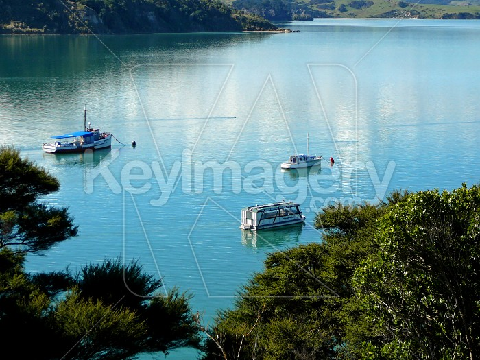 boats on water Photo #1533