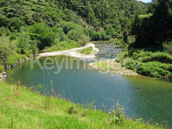 Bush river 1 Photo #6393