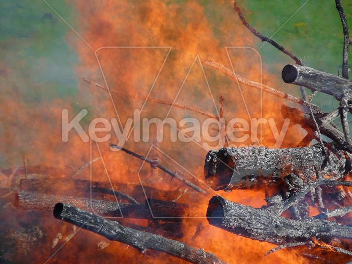 Crackling fire Photo #1053