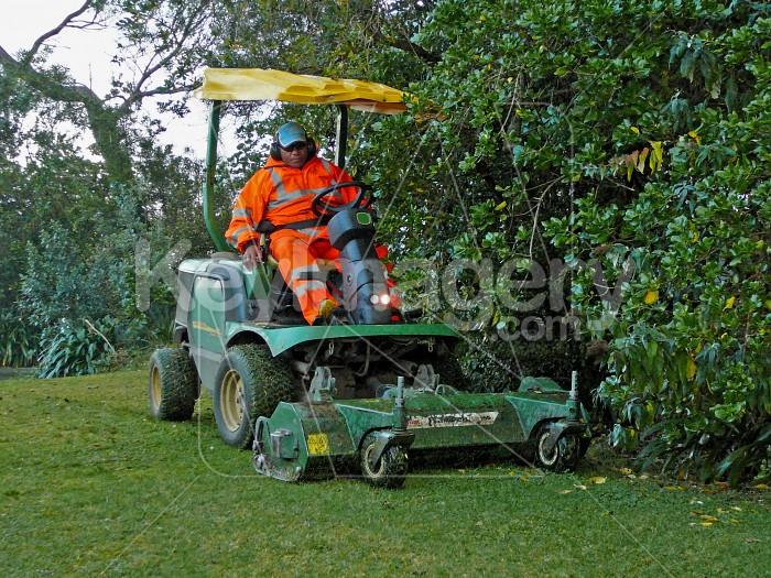 Cutting the grass Photo #1282