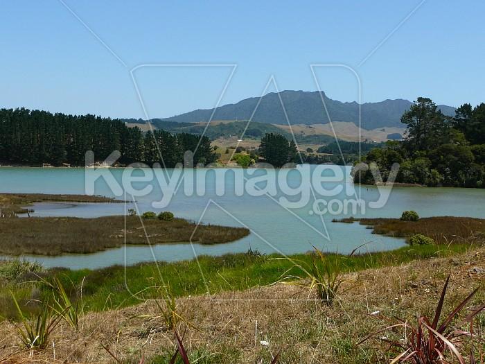 Estuary view Photo #12550