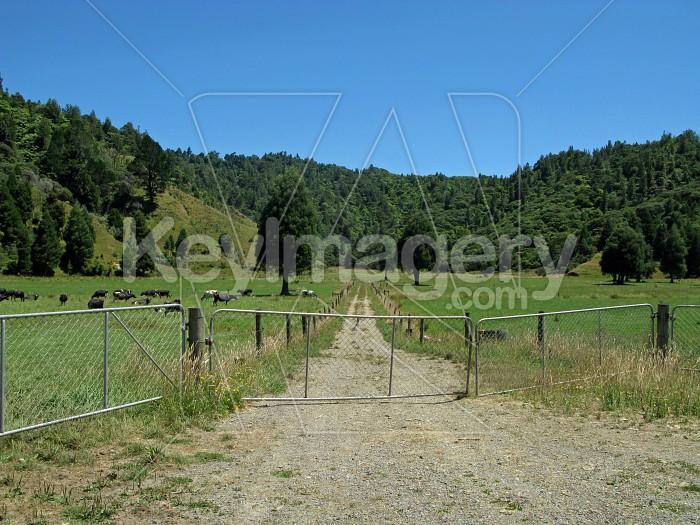 Farm track Photo #7852
