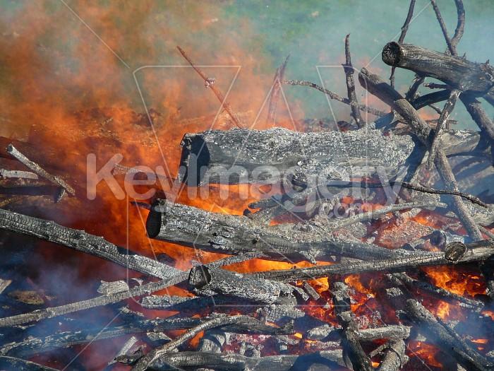 Firery burnoff Photo #1054