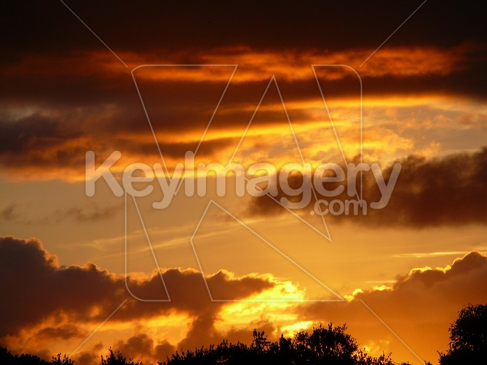 firey sunset Photo #1881