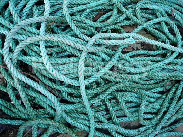 green rope Photo #1873