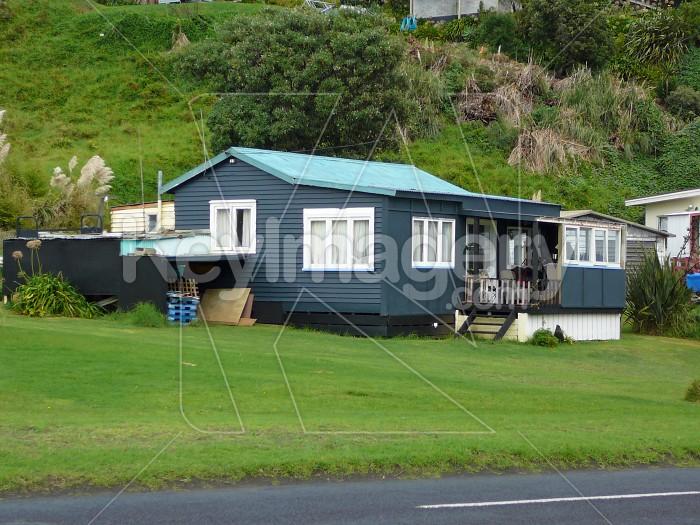 kiwi bach 1 Photo #915