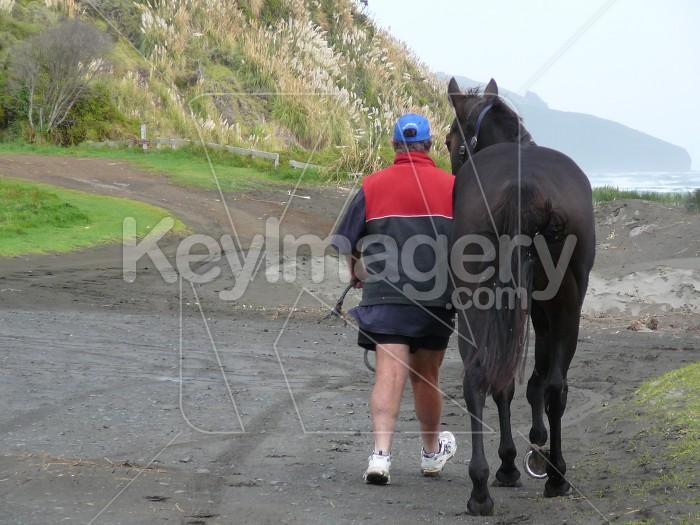 Man walking a horse Photo #730