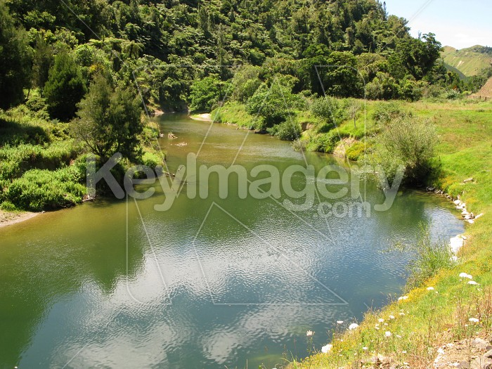 River reflections Photo #7306