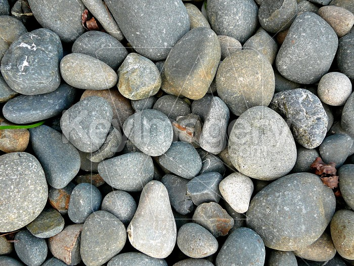 River stones Photo #1295
