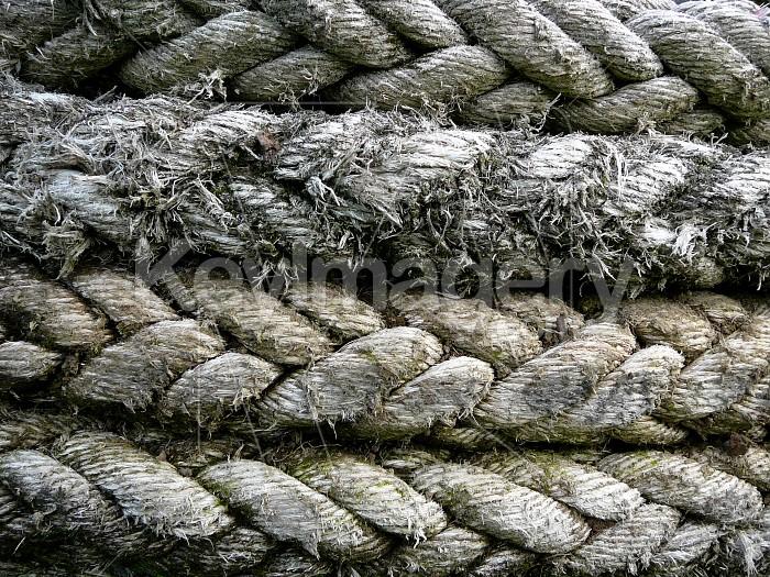 Rope rings Photo #1611