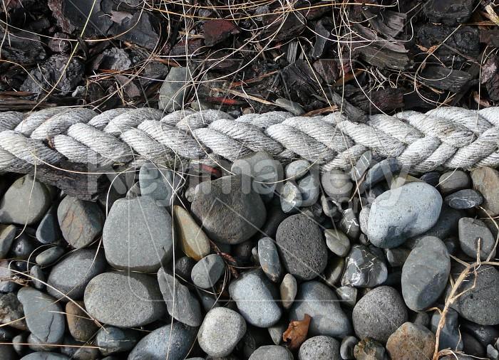 Rope, rocks and bark Photo #754