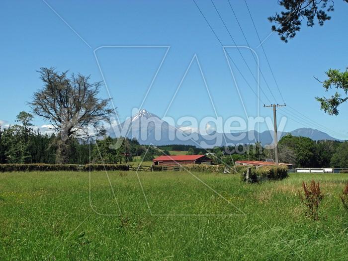 Rural Taranaki scene  Photo #6395