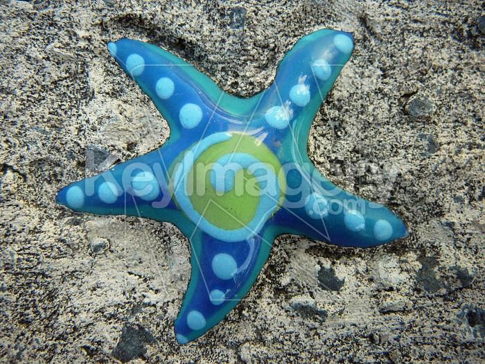 Star in concrete Photo #1183