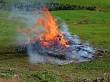 Fire, Fire!!
