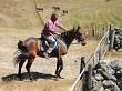Turning the horse