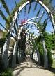 Bougainvillea path