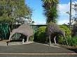 Two kiwi statues