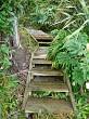 Larger steps