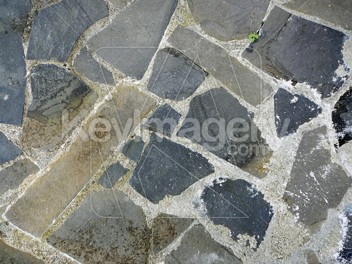 Stone pavers Photo #4397
