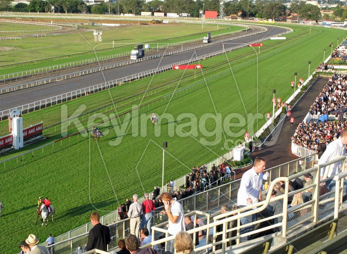 Stradbroke Races Photo #12606