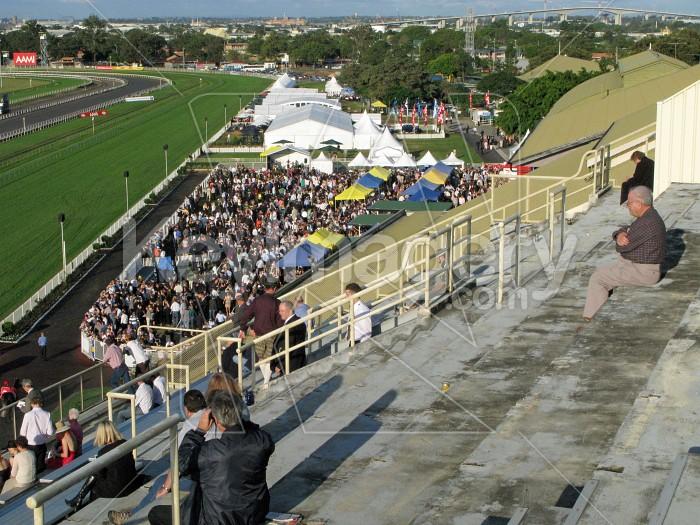 Stradbroke Races Photo #12607