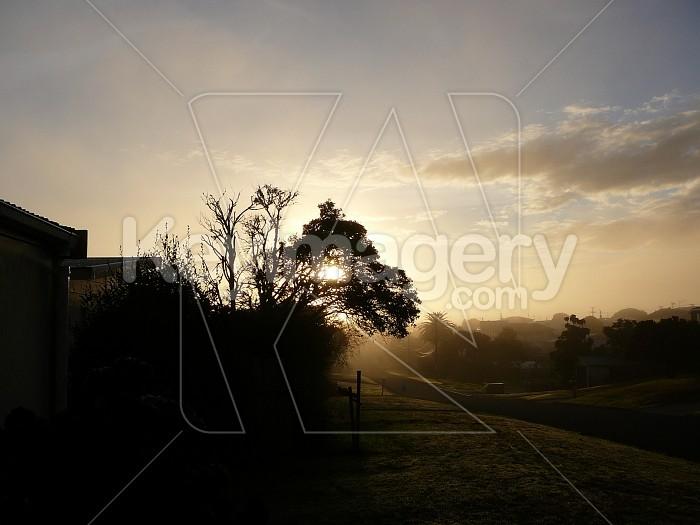 Sun filter Photo #1113
