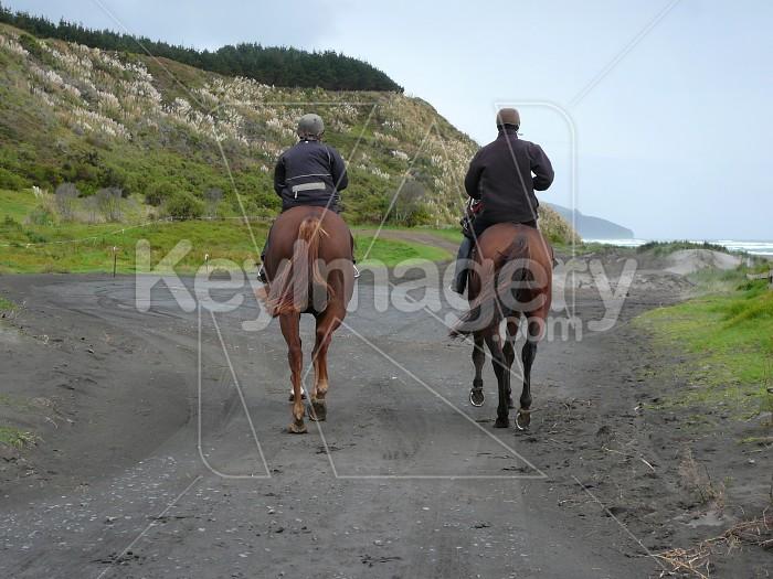 Two horses and riders on a beach walk Photo #738