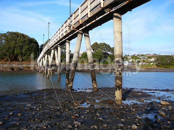 Under thr footbridge Photo #965