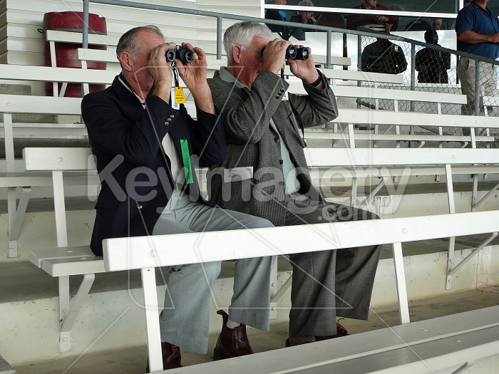 watching the races Photo #3012