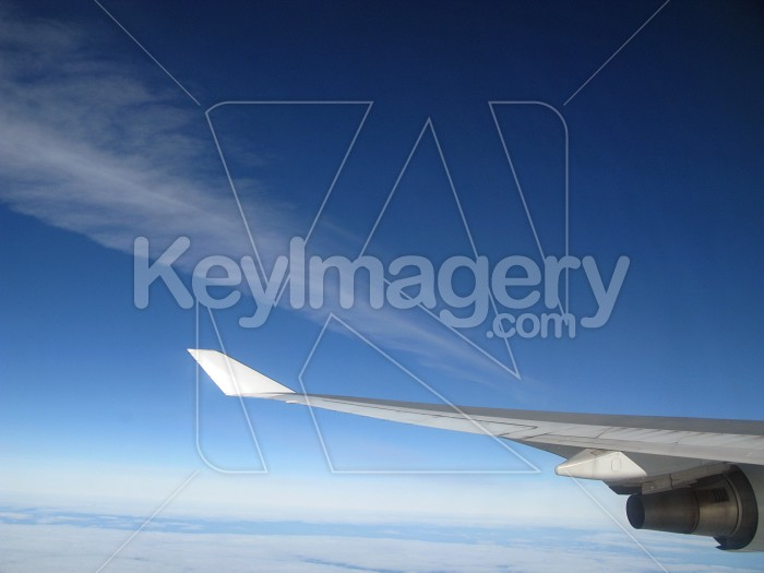 Wing tip Photo #12374