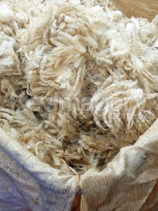 Wool in bale Photo #6048
