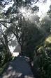 Walking Track around Mt Maunganui, NZ