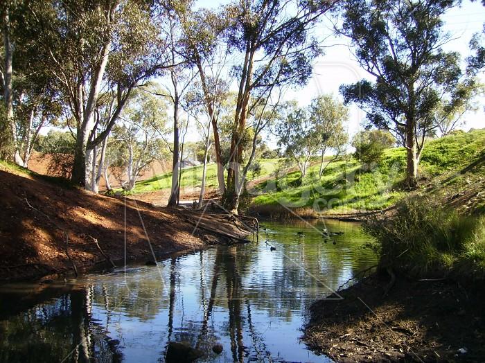 Pretty Pond Photo #4621