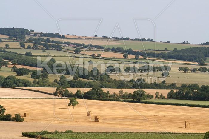 classic english countryside Photo #828